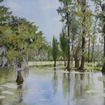 Herons, Magnolia Plantation